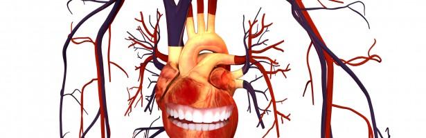 image -Relación entre las enfermedades periodontales y cardiovasculares